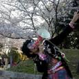 大坂花見の宴
