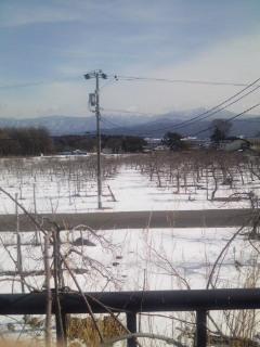 雪深いね、ここは
